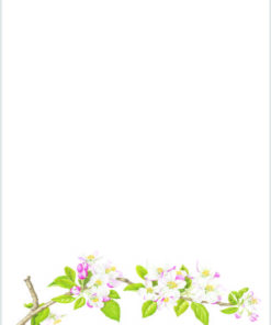 Apple Blossom writing paper